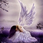 Angel Wings Type Fragrance Oil